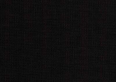 Phoenix | Black
