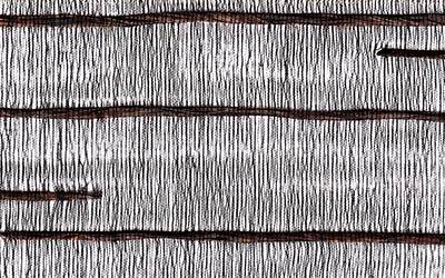 Silk Road - exotic oriental rustic woven blinds